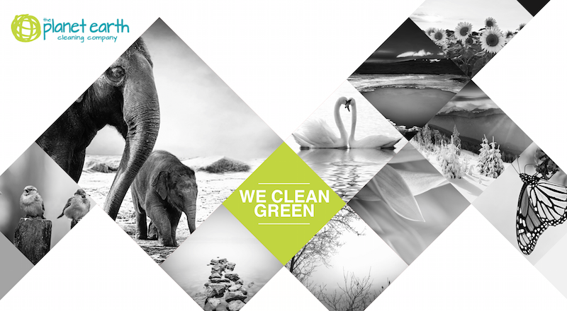 Compare-Eco-Friendly-Cleaning